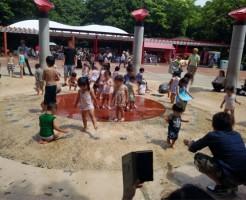 千葉市動物公園の噴水で水遊び