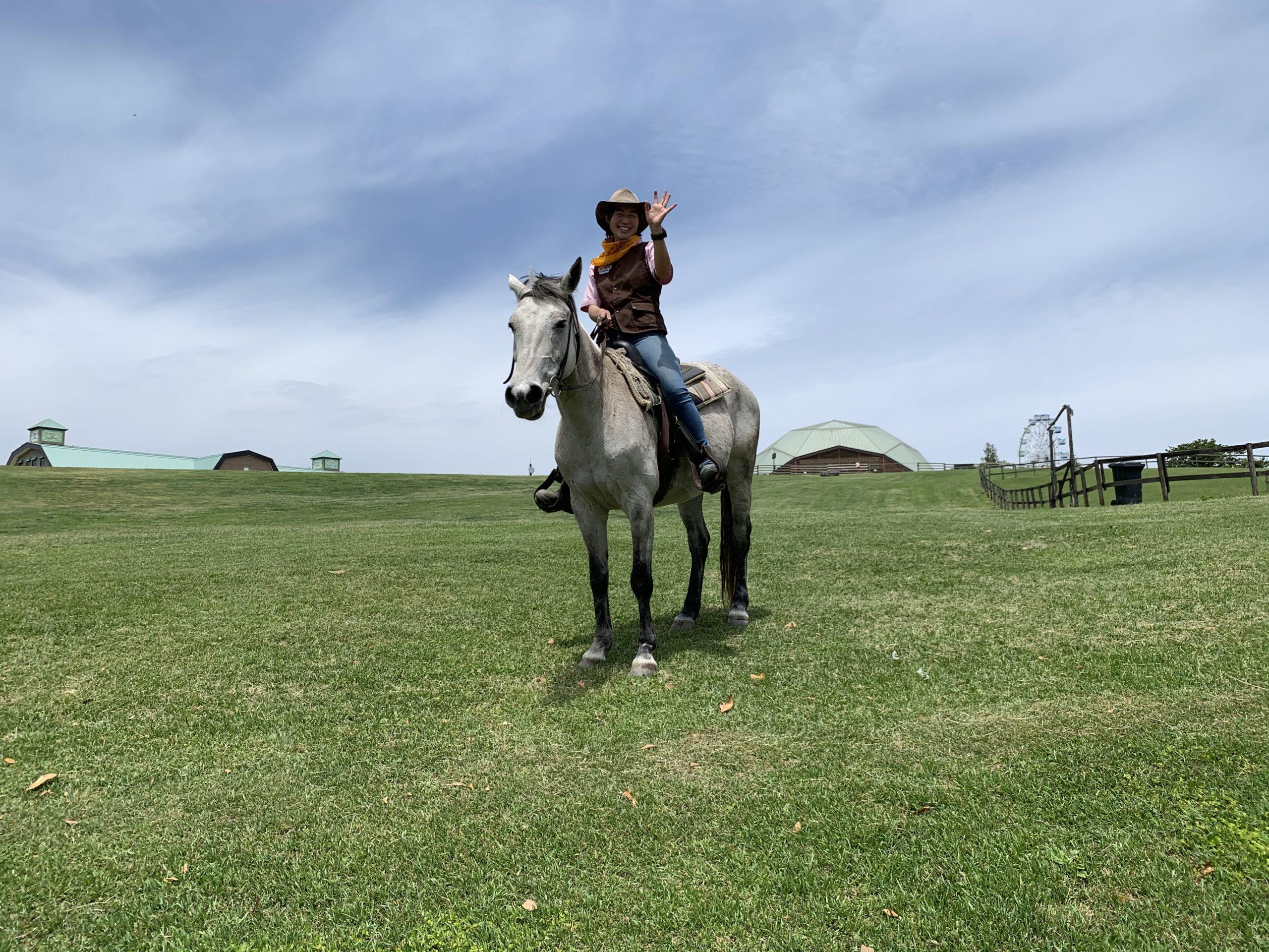 マザー牧場のドライブスルーファーム行って来た
